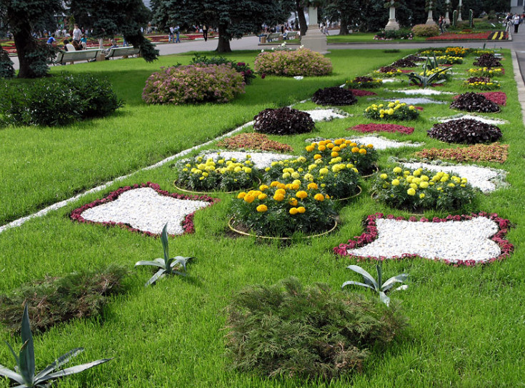 Виды ландшафтного дизайна в саду