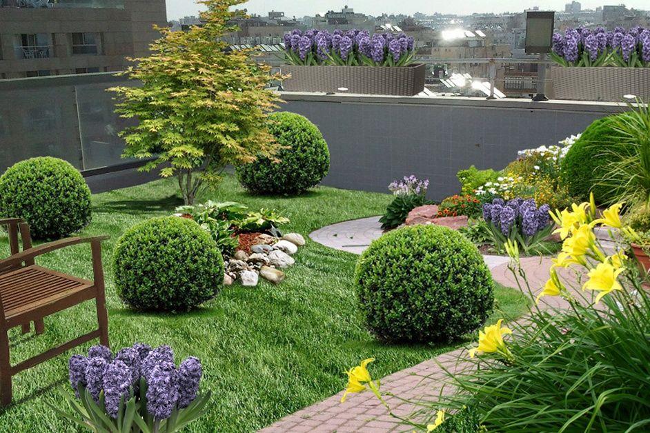 Озеленение крыш или как сделать сад на